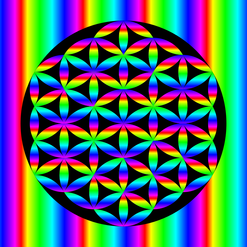 Rainbow Flower of Life in black circle