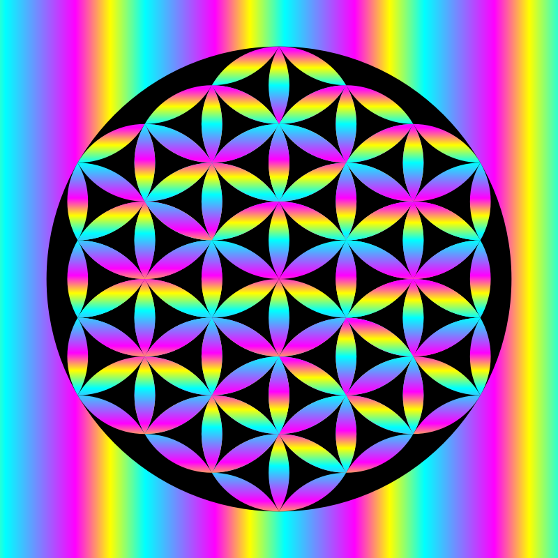 YCM Rainbow Flower of Life in Black Circle