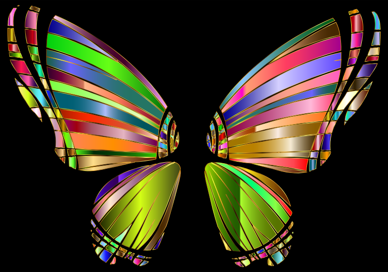 RGB Butterfly Silhouette 10 4