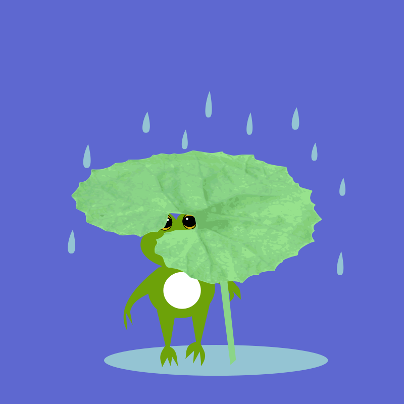 Frog taking shelter from the rain