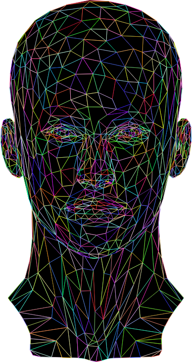 Prismatic Low Poly Female Head Wireframe