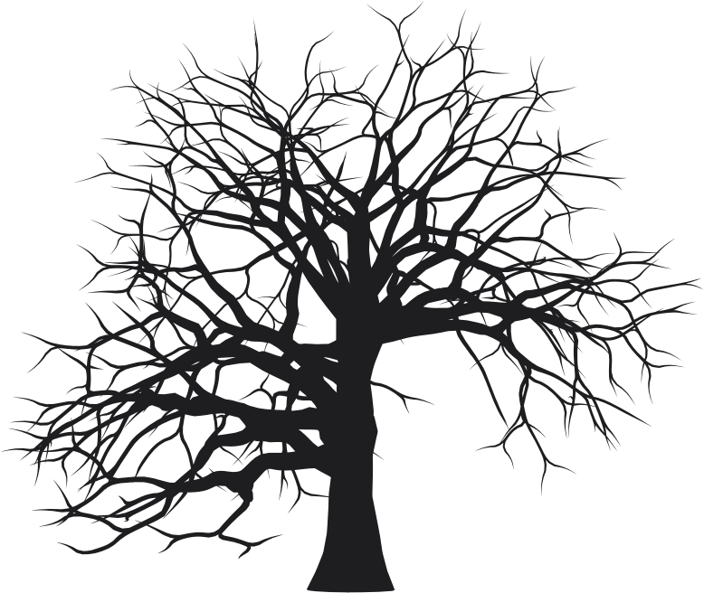 Leafless Tree Silhouette