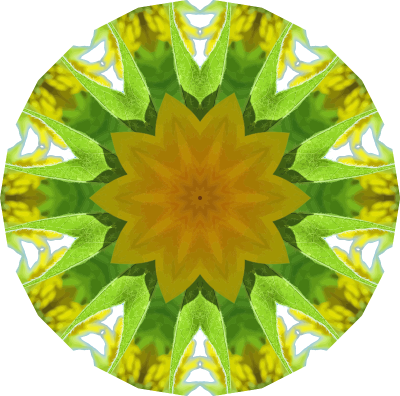 Sunflower kaleidoscope 11