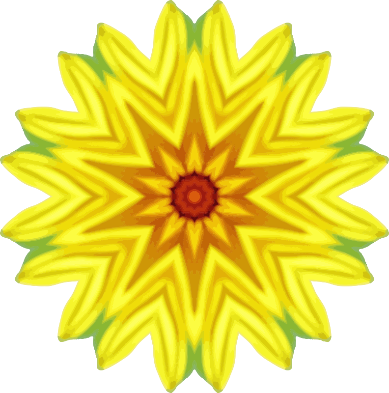Sunflower kaleidoscope 13