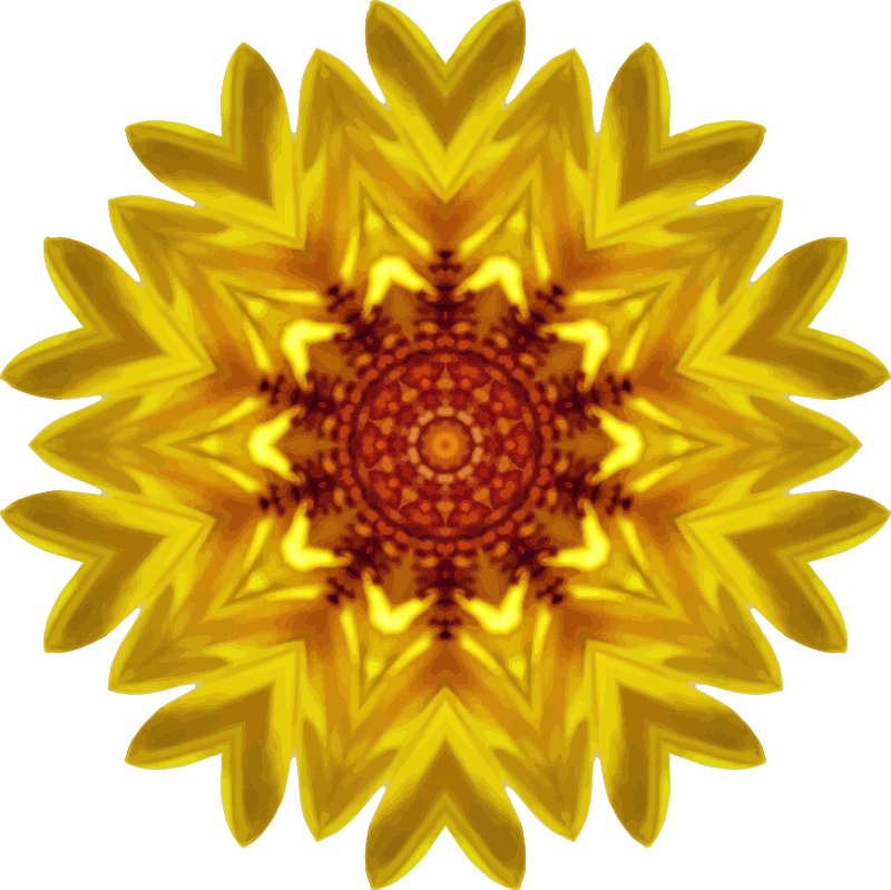 Sunflower kaleidoscope 17