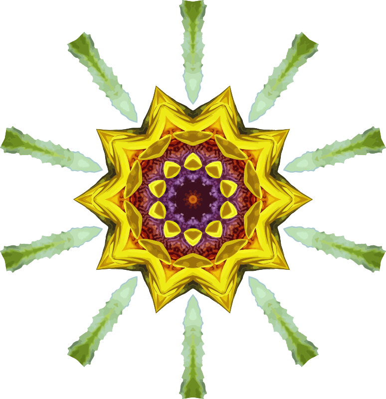 Sunflower kaleidoscope 19