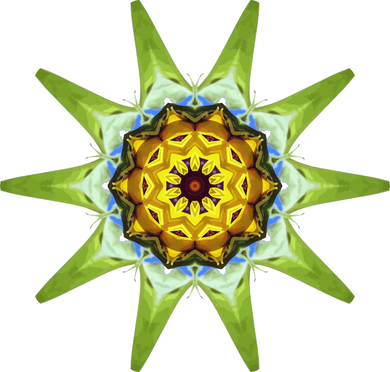 Sunflower kaleidoscope 20