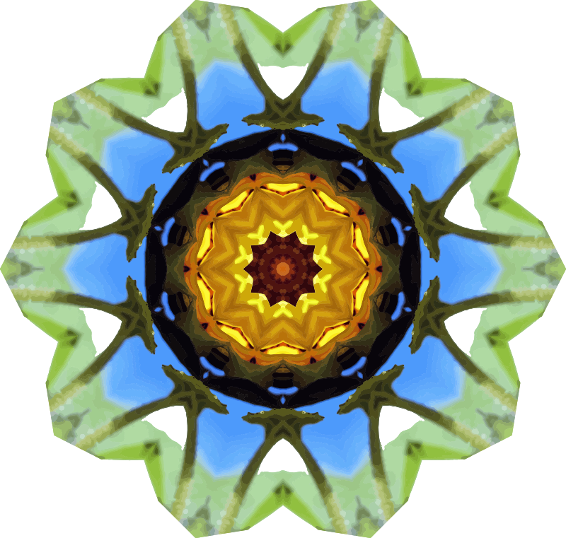 Sunflower kaleidoscope 22