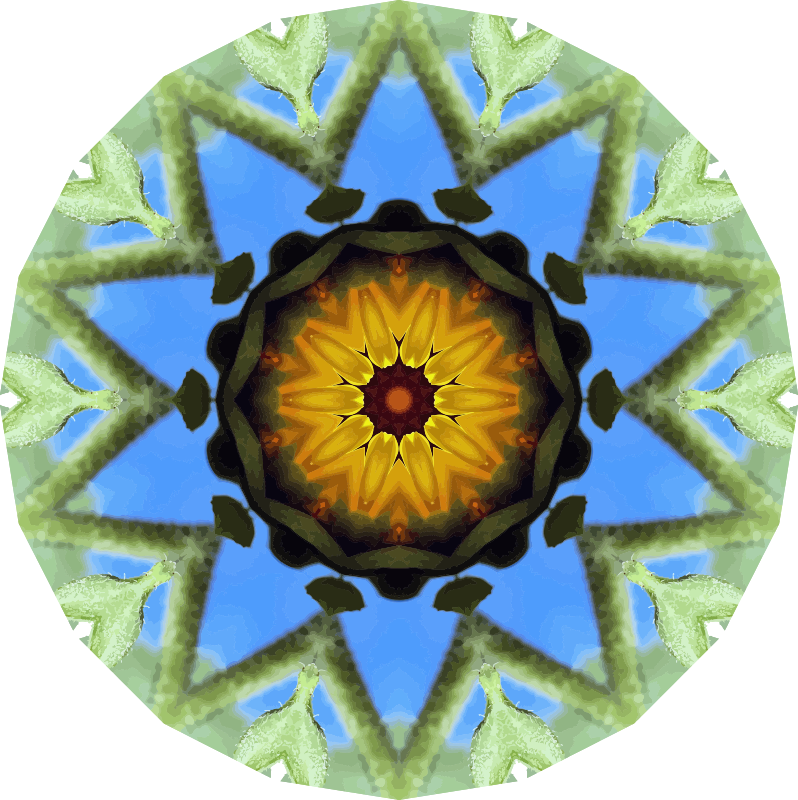 Sunflower kaleidoscope 21