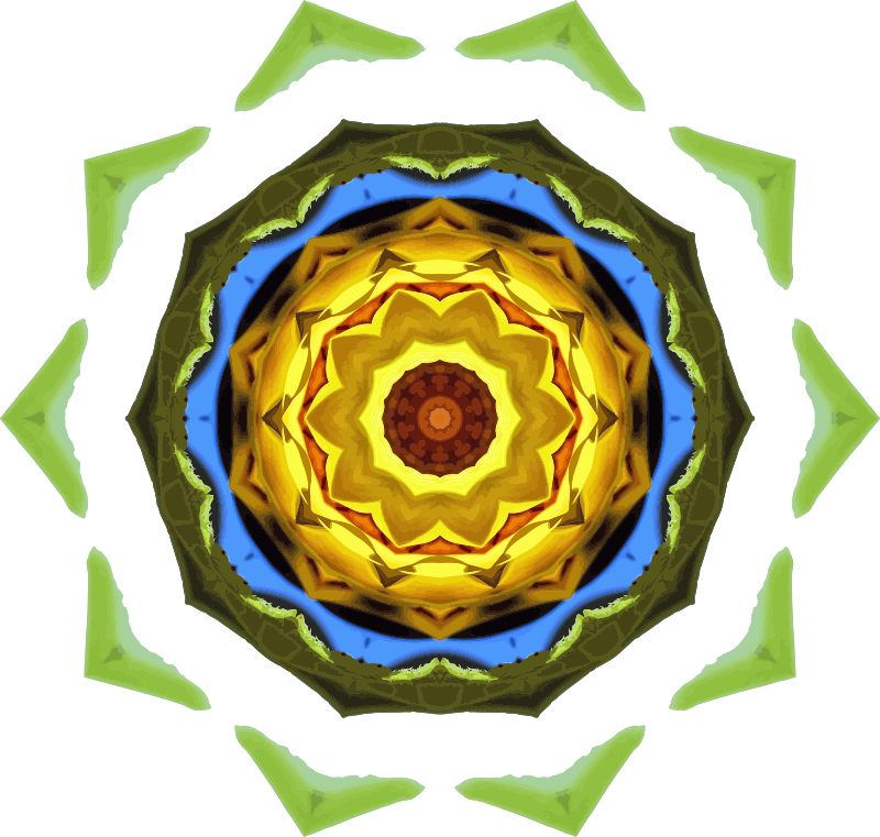 Sunflower kaleidoscope 23
