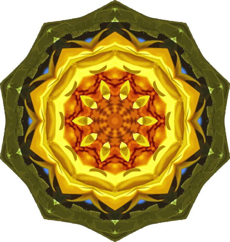 Sunflower kaleidoscope 24