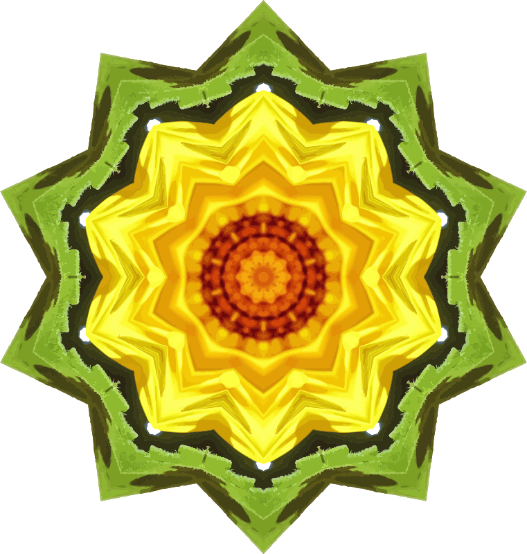 Sunflower kaleidoscope 25