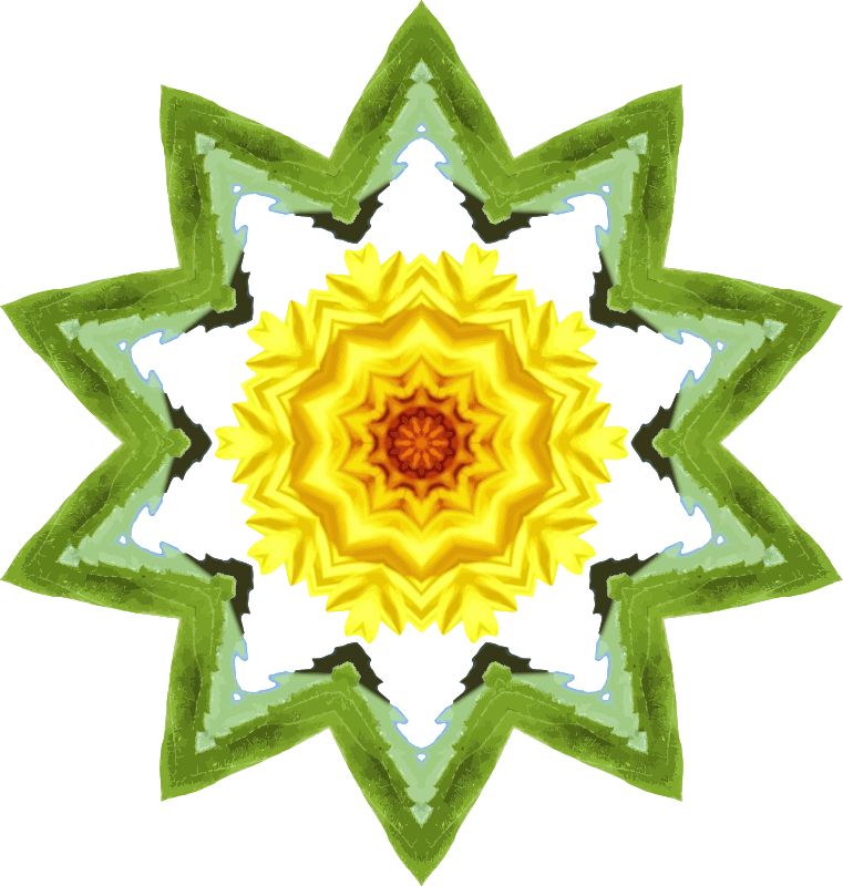 Sunflower kaleidoscope 26