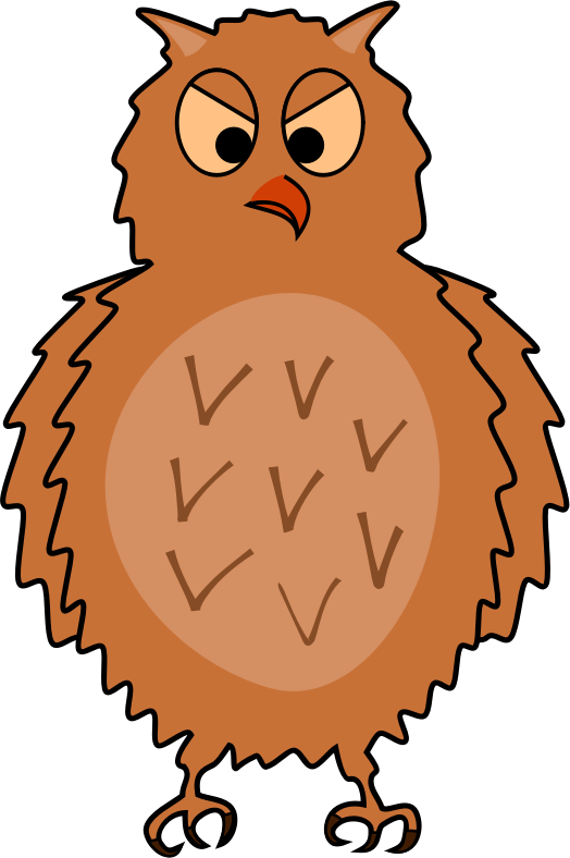 Enraged owl - front view