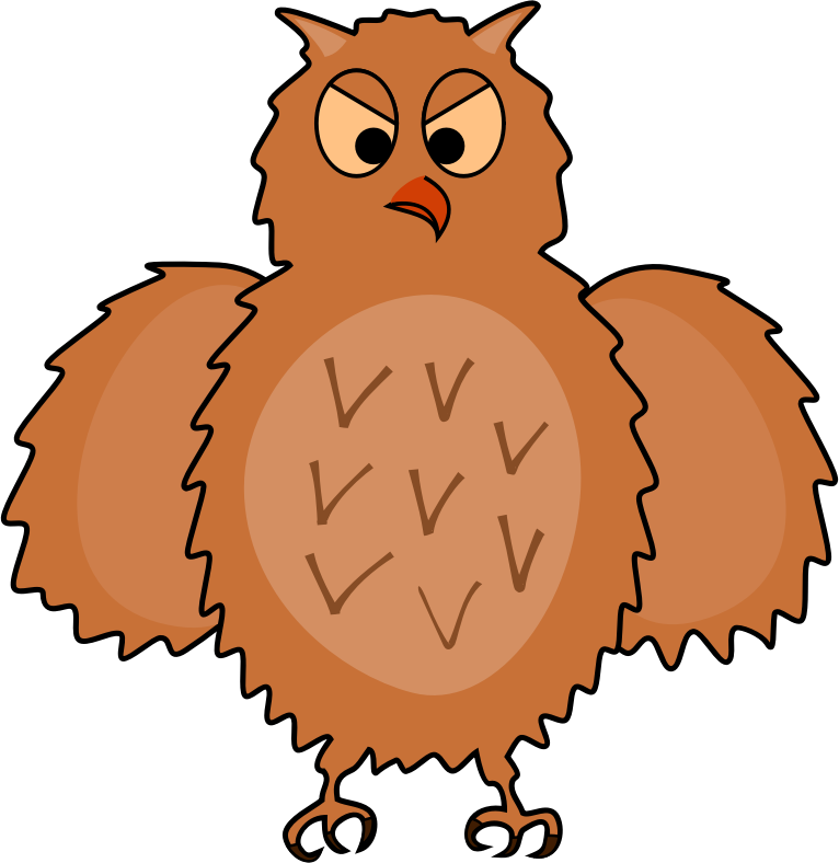 Enraged owl - front view, spread wings