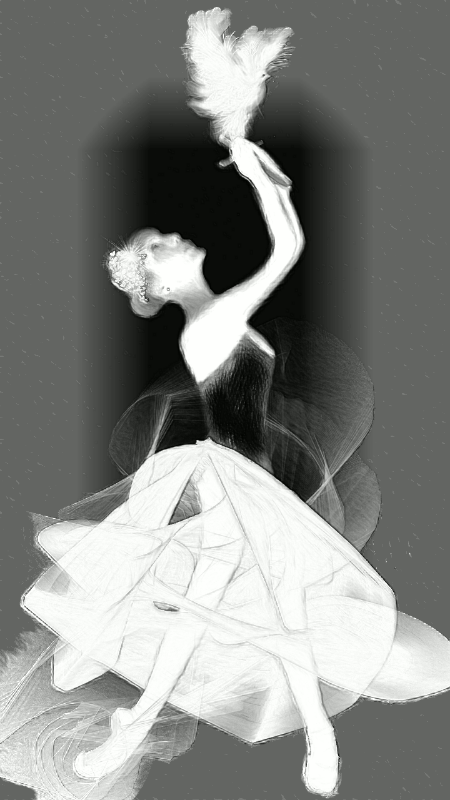 Ballet Black-White Framed Dove Ballerina Suite