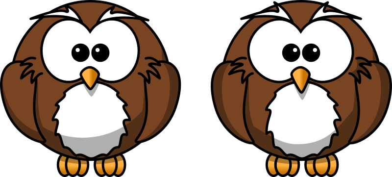 Cartoon owl - spot the 10 differences