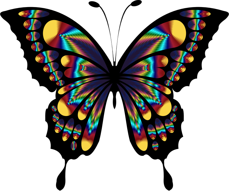 Prismatic Butterfly Remix 2