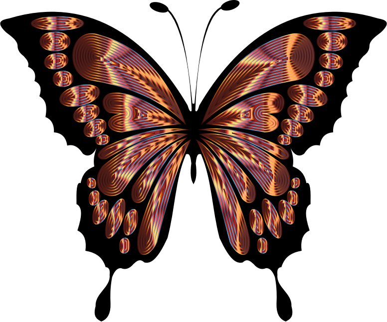 Prismatic Butterfly Remix 5