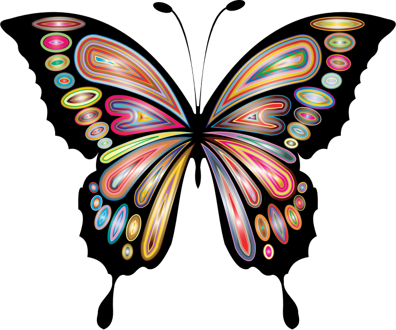 Prismatic Butterfly Remix 8