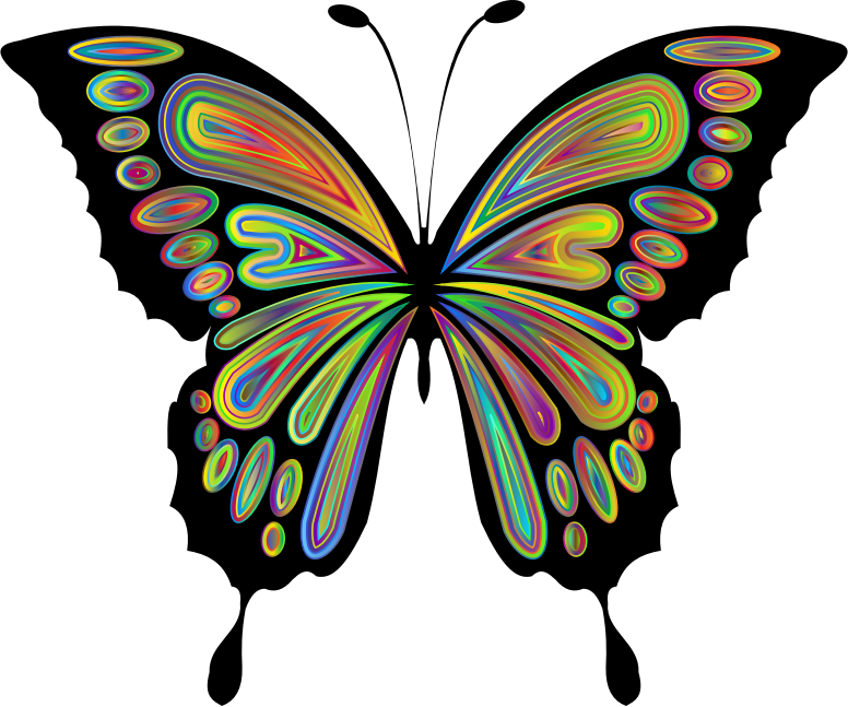 Prismatic Butterfly Remix 9