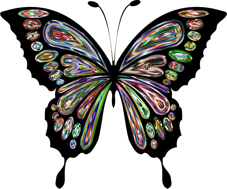 Prismatic Butterfly Remix 11
