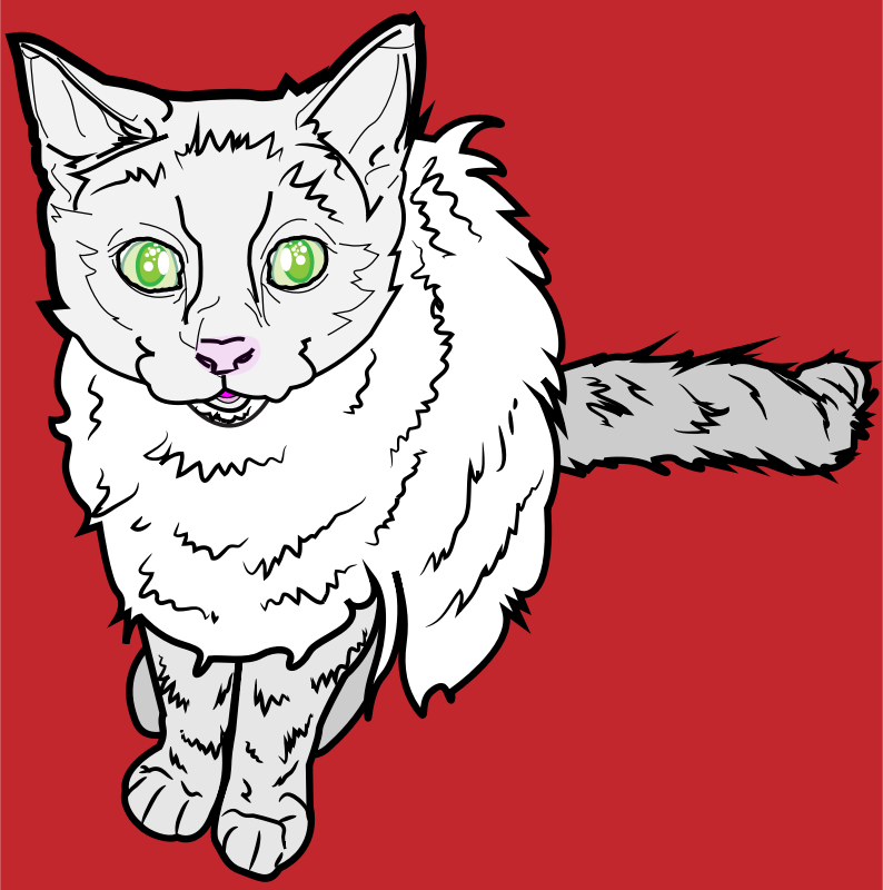 White Cat on Red Background