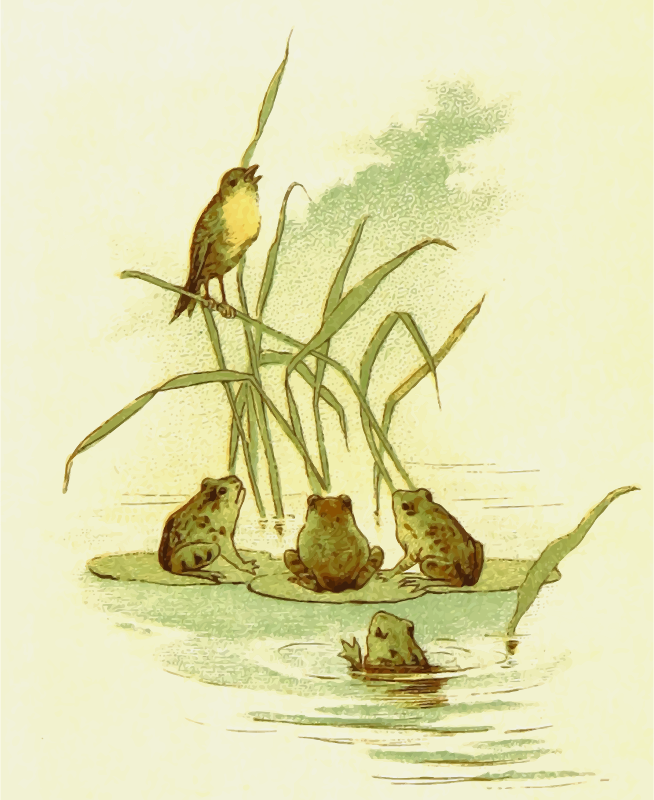 Bird with frogs