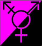gender queer anarchy flag
