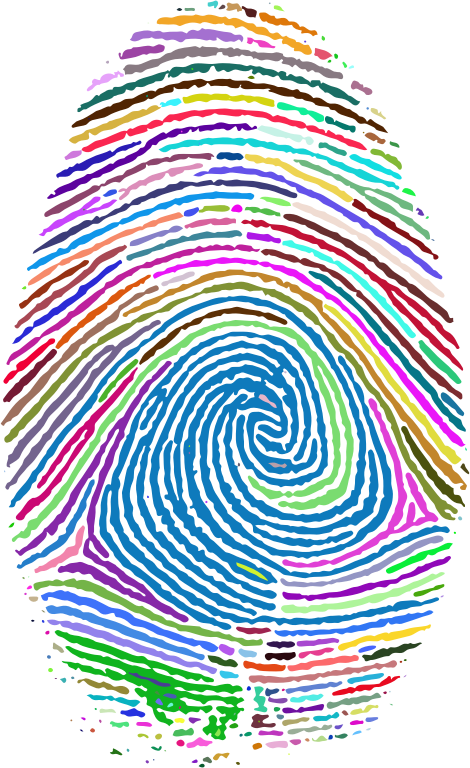 Prismatic Fingerprint