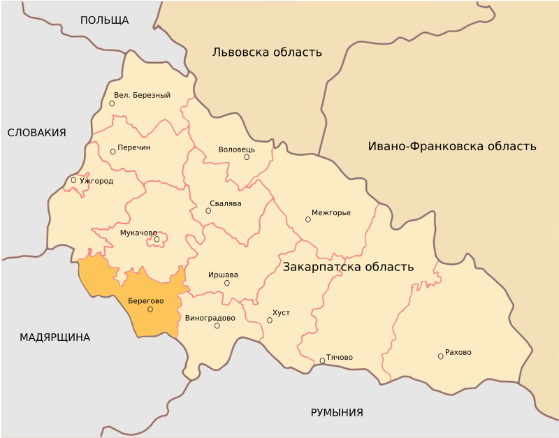 Berehove District