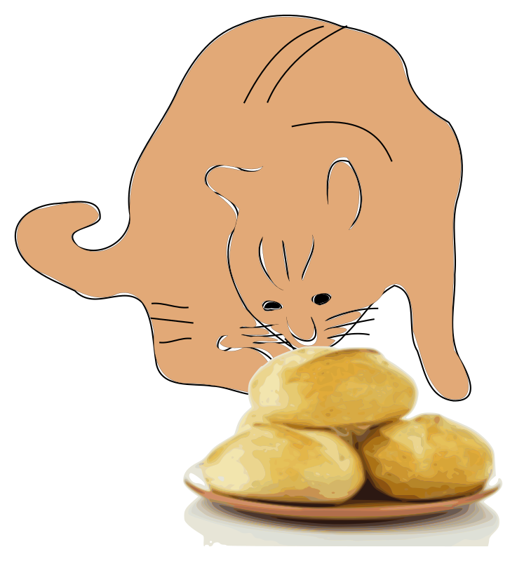 A cat smells bread.