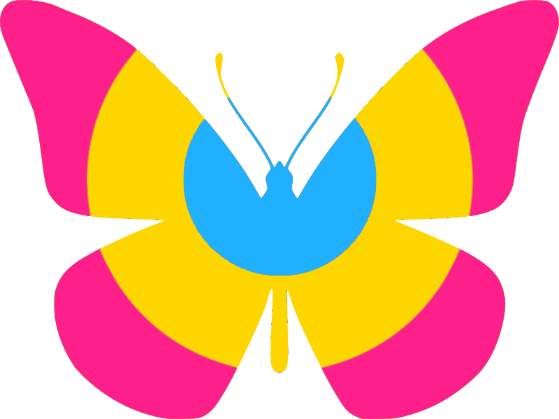 Pan Flag Butterfly