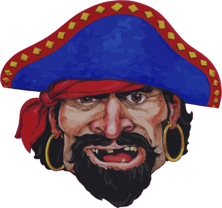 Realistic Pirate Illustration