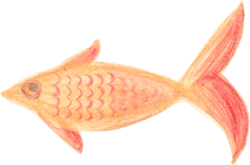 Painted Fish Orange patterned traced