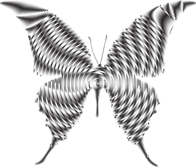 Prismatic Butterfly Silhouette 6 Concentric 2