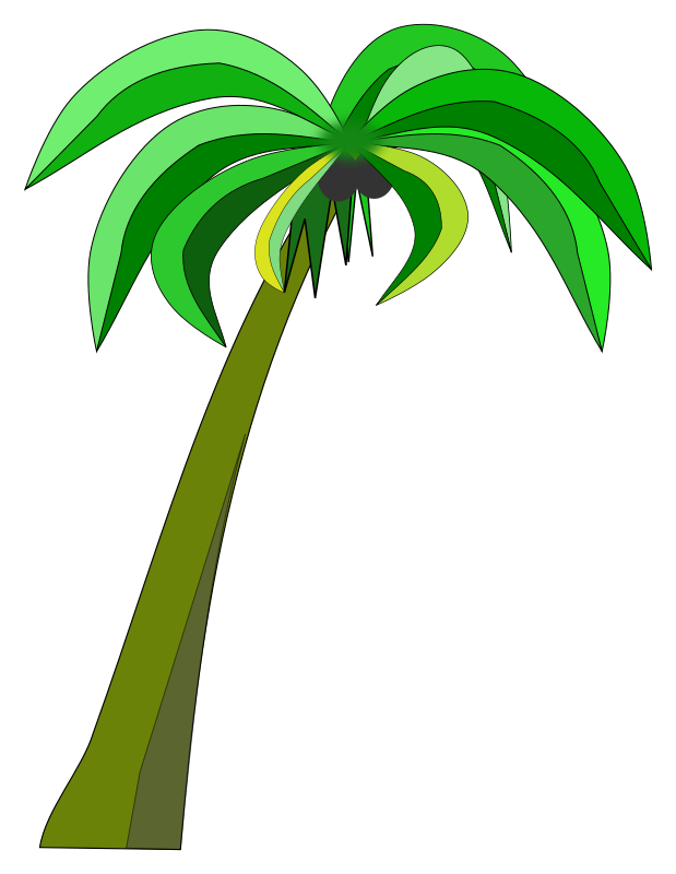 Palm or Coconut Tree
