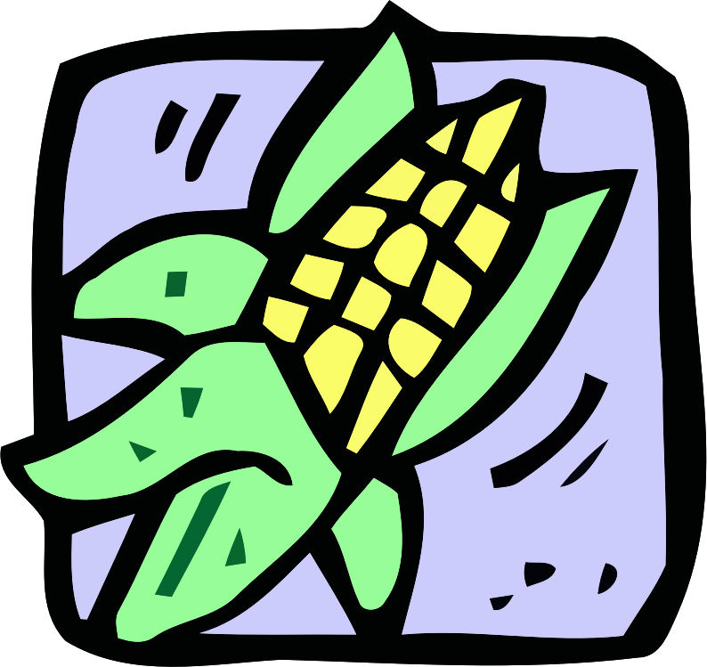 Food and drink icon - sweetcorn