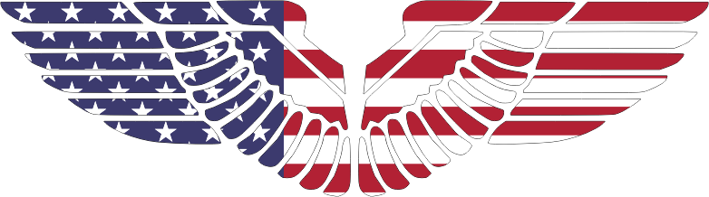 American Eagle Wings With Stroke