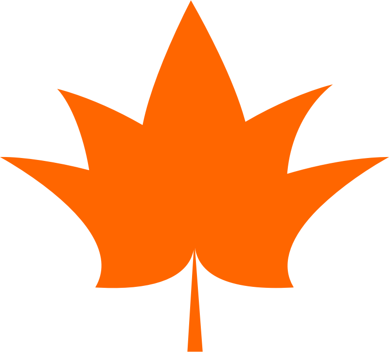 Maple leaf vectorized