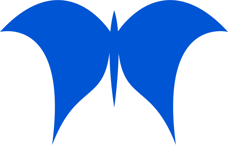 Butterfly vectorized