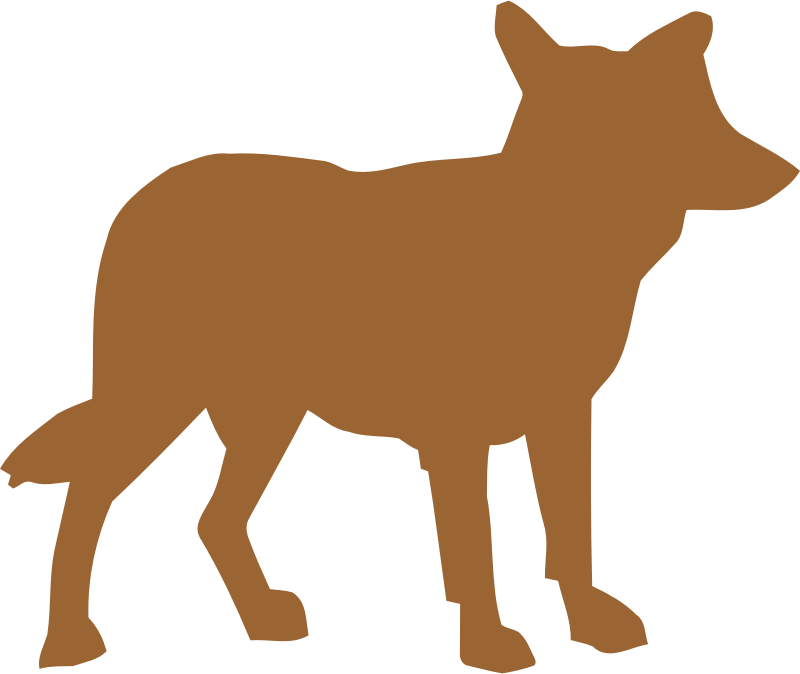 Coyote vectorized