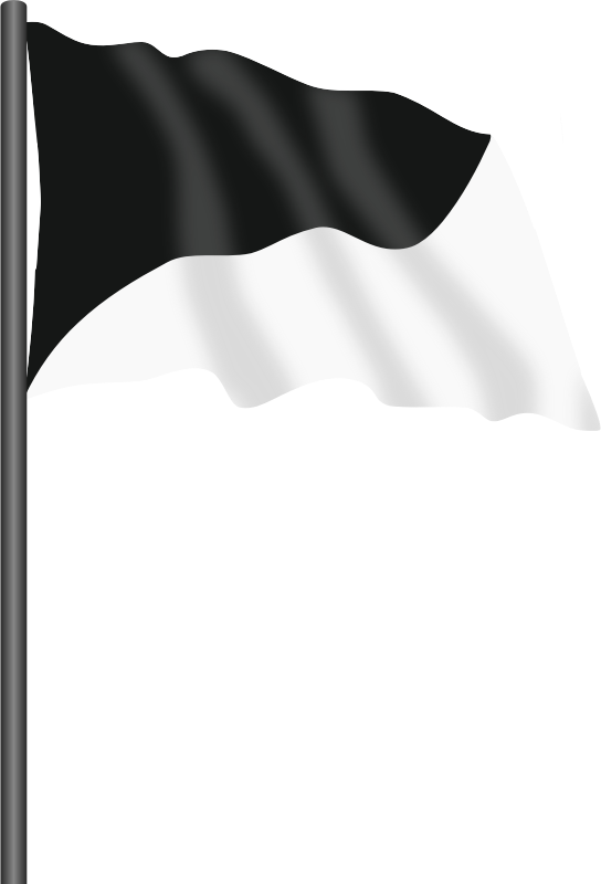 Motor racing flag 7 - black and white flag