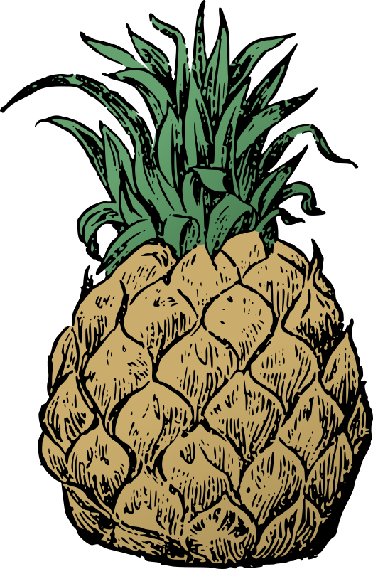 Basic Pineapple