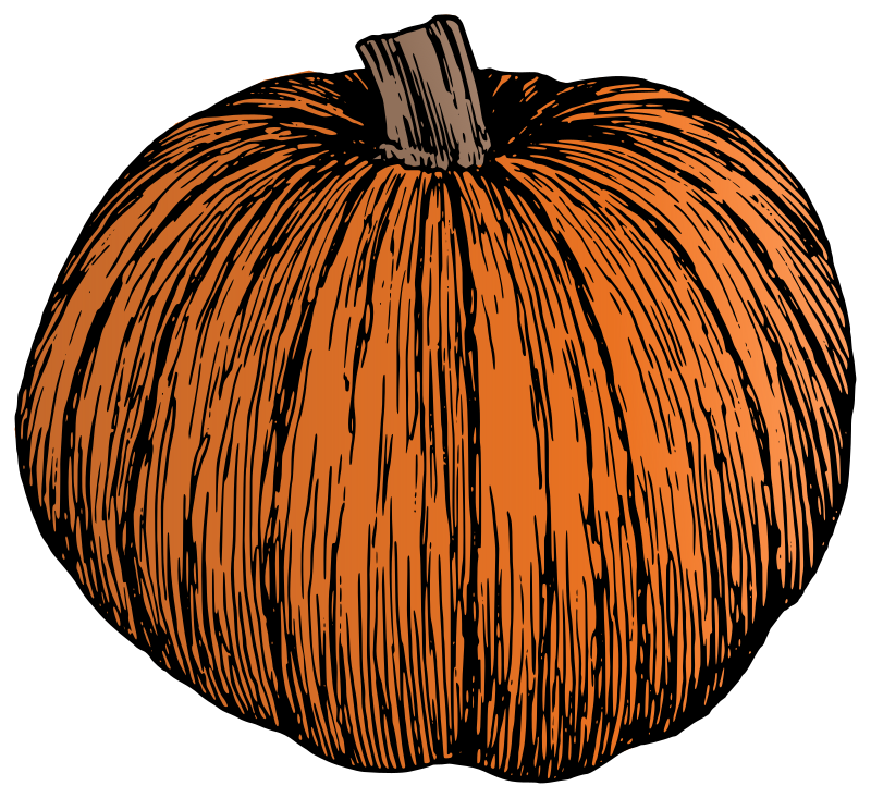 Pumpkin - Colour