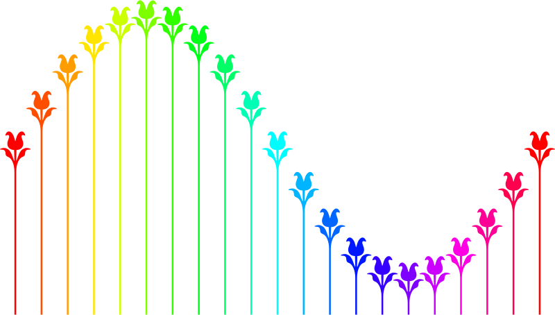 Flower sine curve (colour)