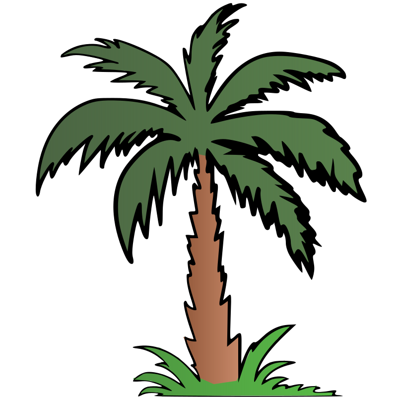 Palm Tree - Colour