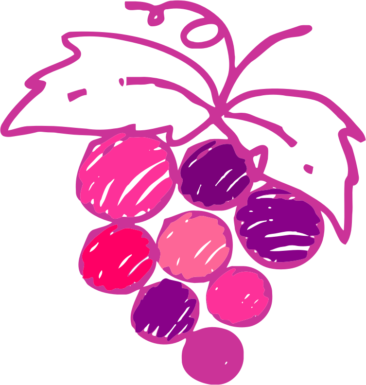 Sketched grapes