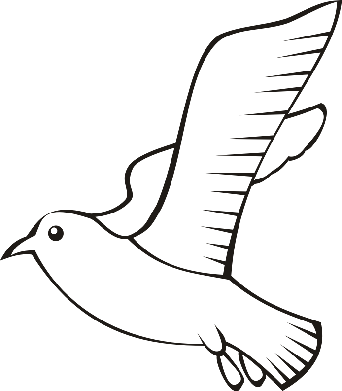 Bird in flight 5 (outline)