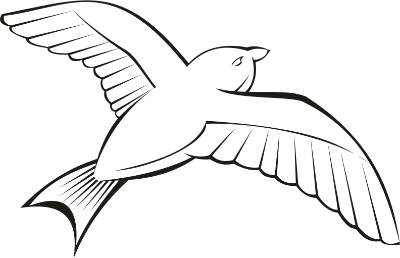 Bird in flight 6 (outline)